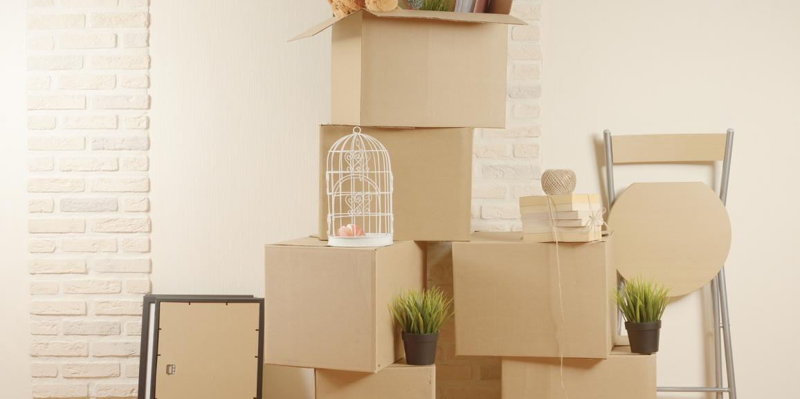 Should You Use Professional Packers For Your Move?